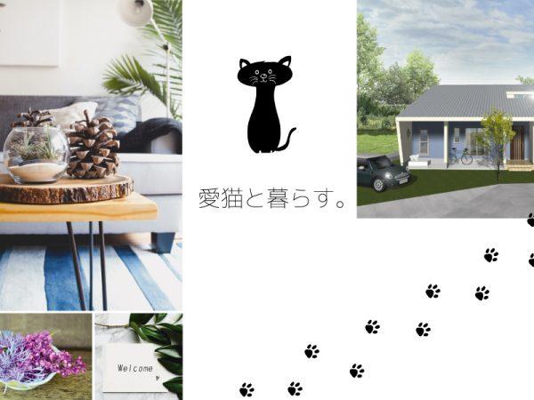 新築/4月 完成見学会 【上田市芳田】